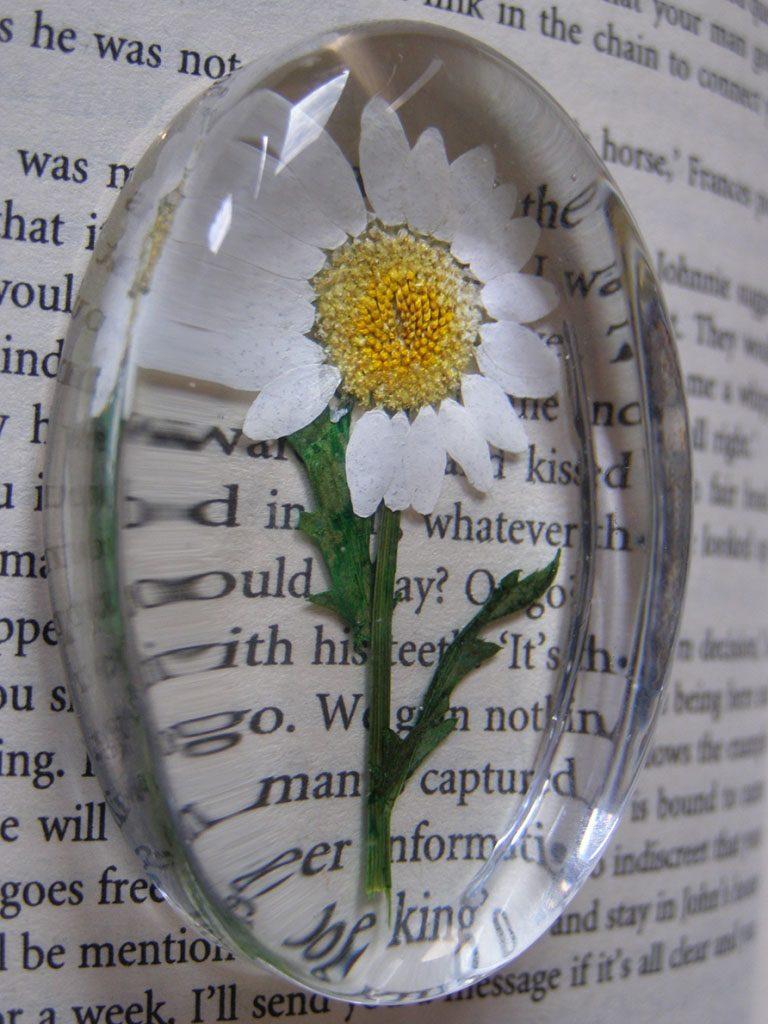 tekst met een vergrootglas